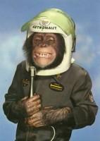 chimp in space suit